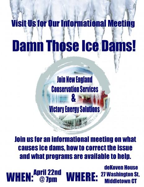 Damn those Ice Dams